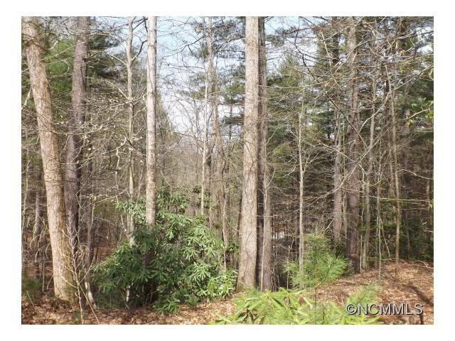179 Larkhaven Drive #179, Nebo, NC 28761 (#NCM580955) :: Exit Mountain Realty