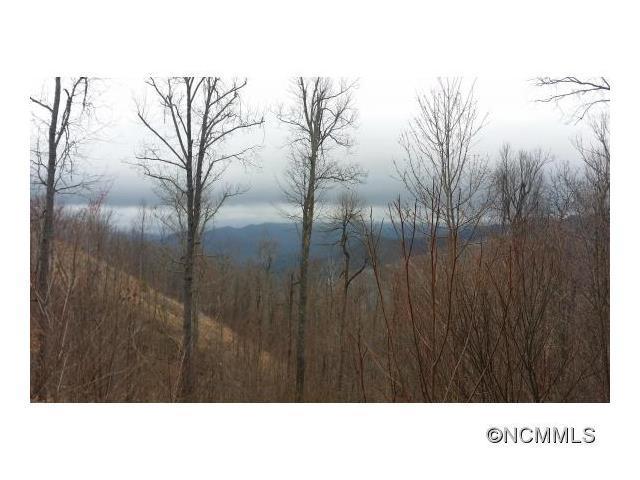 21 Crockett Ridge Road #191, Black Mountain, NC 28711 (#NCM581446) :: Exit Realty Vistas