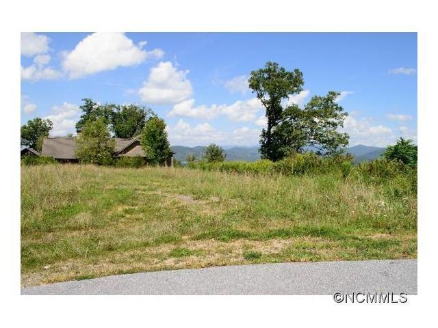 5 Redtail Ridge Road #54, Asheville, NC 28806 (#NCM582462) :: Miller Realty Group