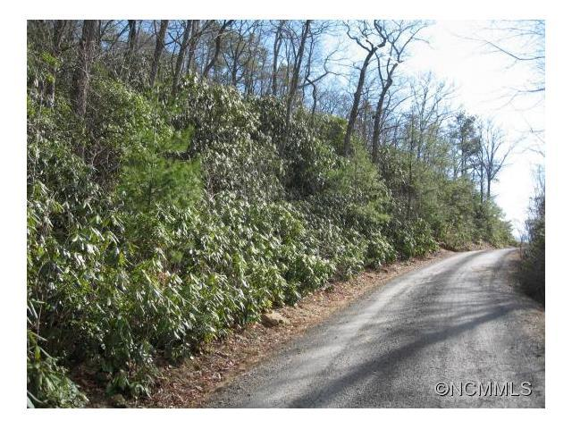 Lot 10 Rock Springs Road #10, Fairview, NC 28730 (#NCM582581) :: LePage Johnson Realty Group, LLC