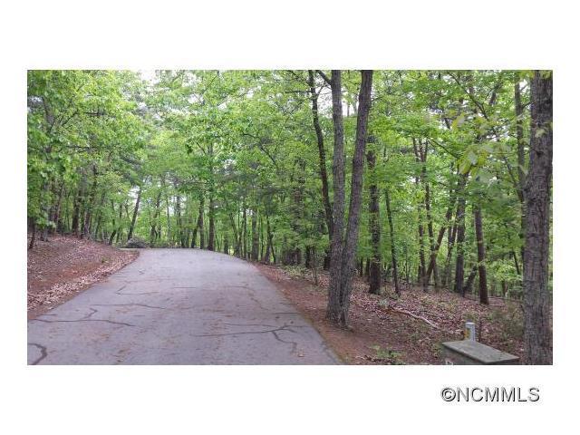 Lot55&56 Willow Lane Lane, Columbus, NC 28722 (#NCM583025) :: LePage Johnson Realty Group, LLC