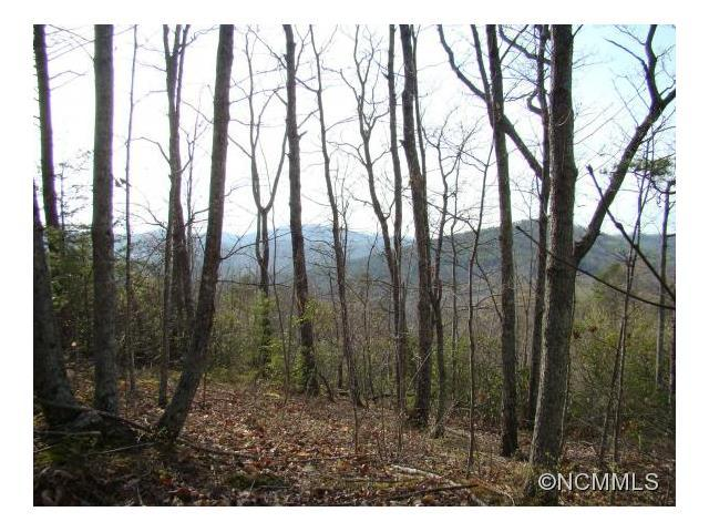 47 Woodgate Drive, Bostic, NC 28018 (#NCM583778) :: Mossy Oak Properties Land and Luxury