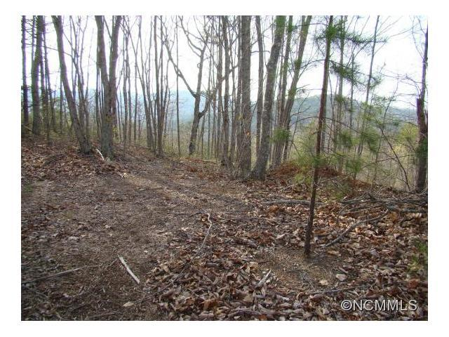 48 Woodgate Drive, Bostic, NC 28018 (#NCM583797) :: Mossy Oak Properties Land and Luxury