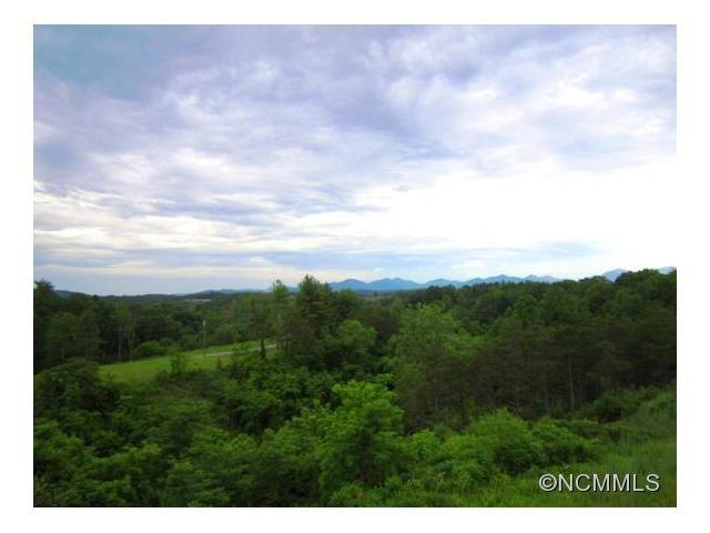 Lot #2 Big Rocky Top Drive, Weaverville, NC 28787 (#NCM585671) :: Exit Mountain Realty