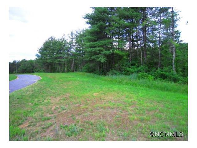Lot # 14 South Pine Drive, Weaverville, NC 28787 (#NCM585685) :: Exit Mountain Realty