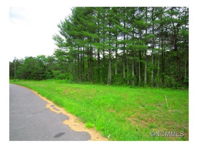 Lot # 15 & 16 South Pine Drive, Weaverville, NC 28787 (#NCM585686) :: Exit Mountain Realty