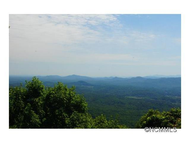 67 Tanager Lane T-17, Black Mountain, NC 28711 (#NCM586630) :: Puffer Properties