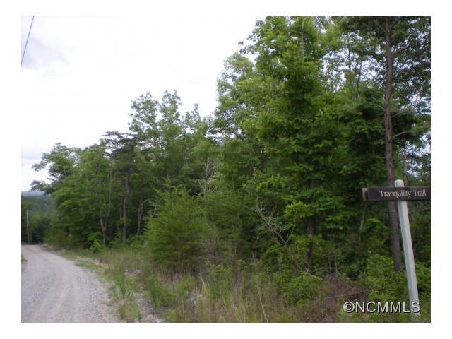 9999 Wilderness Edge Trail #8, Morganton, NC 28655 (#NCM587474) :: Mossy Oak Properties Land and Luxury