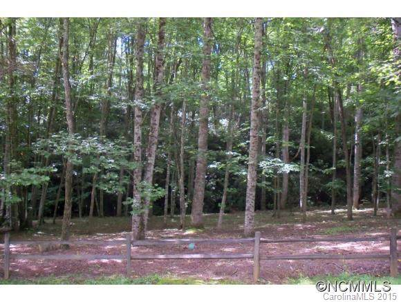 Lot 2 Brannon Forest Drive #2, Waynesville, NC 28785 (#NCM587754) :: The Mitchell Team