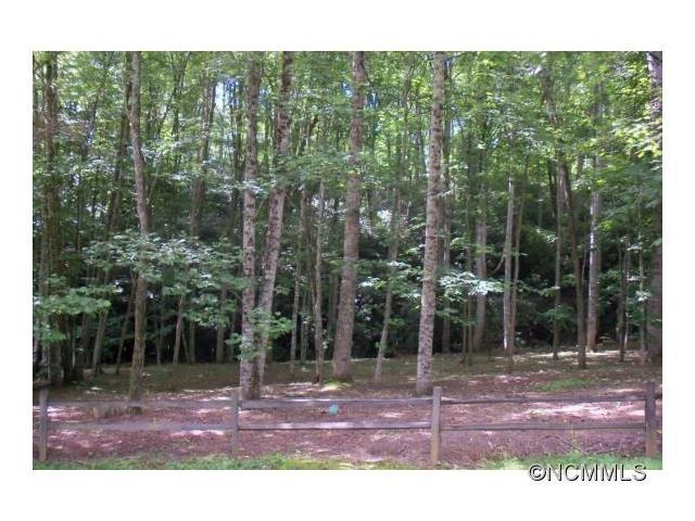 Lot 2 Brannon Forest Drive #2, Waynesville, NC 28785 (#NCM587754) :: Zanthia Hastings Team