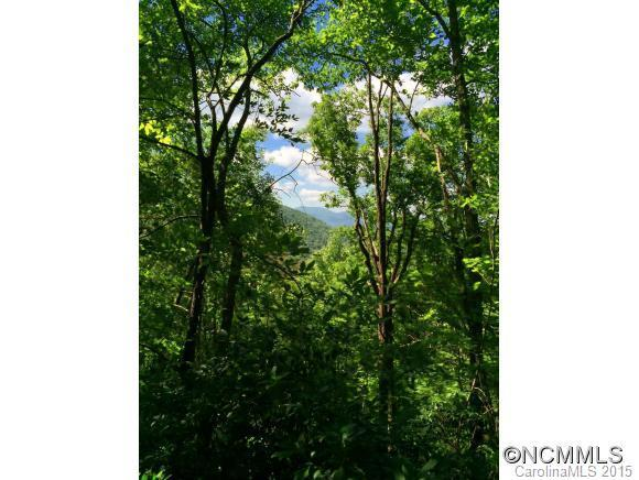 Lot 317 Fairview Forest Drive, Fairview, NC 28730 (#NCM587773) :: The Premier Team at RE/MAX Executive Realty