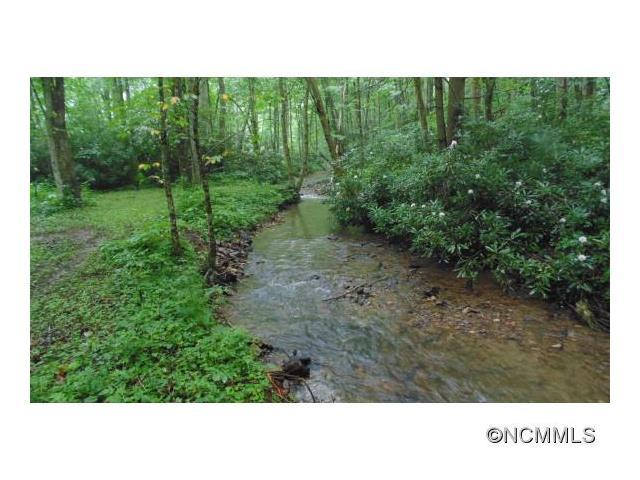 Lot 2 Laurel Valley Road, Mars Hill, NC 28754 (#NCM588562) :: Puffer Properties