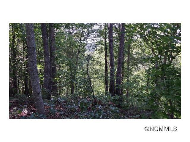 Lot 5 S. Cross Creek Trail, Mill Spring, NC 28756 (#NCM591024) :: RE/MAX Four Seasons Realty