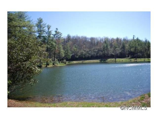 lot 9 Marshall Lake Road #9, Cedar Mountain, NC 28718 (#NCM592054) :: RE/MAX Metrolina
