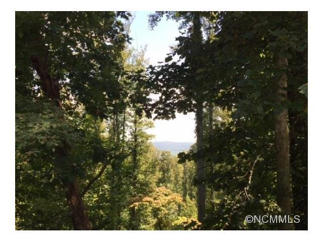 Lot 65 Tatham Road #65, Hendersonville, NC 28792 (#NCM592698) :: LePage Johnson Realty Group, LLC