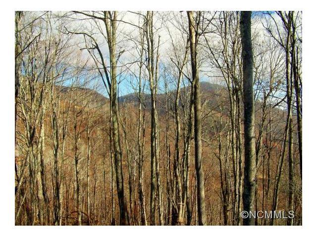lot 8 Tater Patch Road #8, Maggie Valley, NC 28751 (#NCM593621) :: Exit Mountain Realty