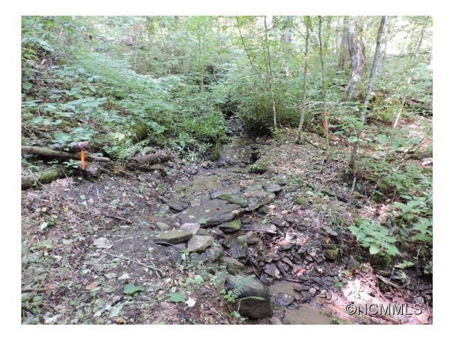 LOT 1 Wolf Pen Meadows, Waynesville, NC 28786 (#NCM593904) :: Stephen Cooley Real Estate Group