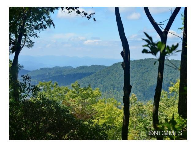 Lot 17 Big Level Drive #17, Asheville, NC 28804 (#NCM594000) :: RE/MAX Four Seasons Realty