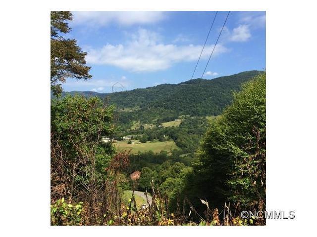 Lot 23 Turkey Trail #23, Canton, NC 28716 (#NCM594042) :: Puffer Properties