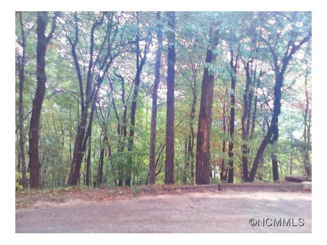 Lot 195 Wild Cherry Drive #195, Mills River, NC 28759 (#NCM594311) :: Team Southline