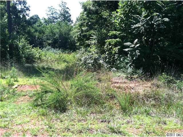 111 Houpe Ridge Lane #31, Statesville, NC 28625 (#2031081) :: Love Real Estate NC/SC