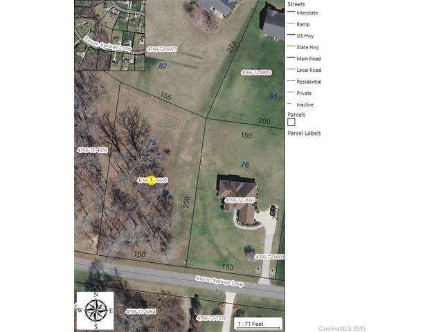 304 Seven Springs Loop #75, Statesville, NC 28625 (#3090638) :: Rinehart Realty