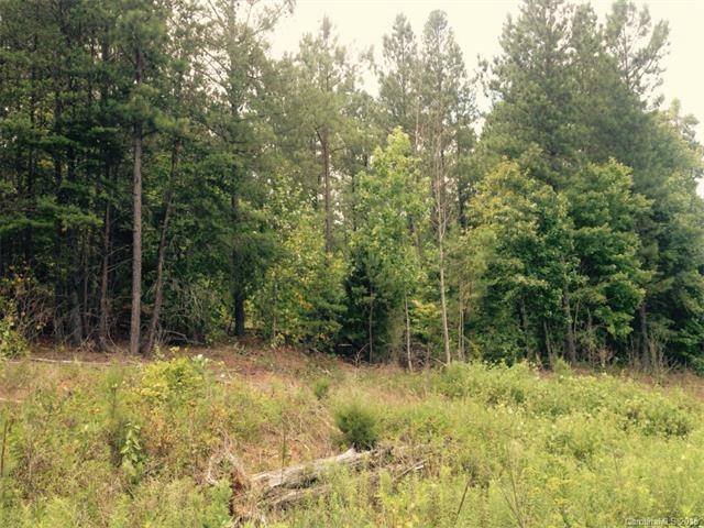 43 AC Pineville Road, Statesville, NC 28677 (#3101943) :: Rinehart Realty