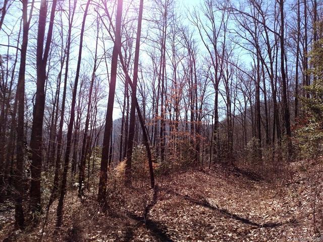Lot 2 Sec 4 Parchment Lane #2, Sylva, NC 28779 (#3120726) :: Exit Mountain Realty