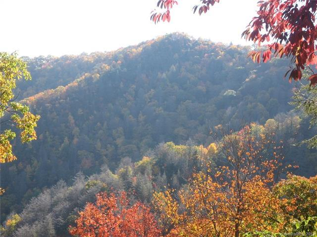 Lot 201 Chickadee Lane #201, Maggie Valley, NC 28751 (#3120857) :: Puffer Properties