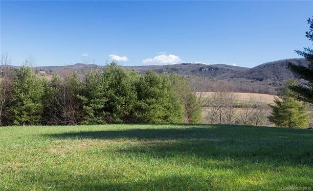 33 Dover Lane, Brevard, NC 28712 (#3135955) :: Exit Mountain Realty