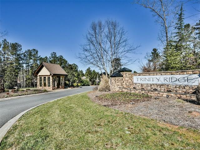 5020 Swordleaf Hill Court, Fort Mill, SC 29715 (#3136892) :: Miller Realty Group