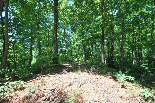 30 Open Ridge Trail #30, Pisgah Forest, NC 28768 (#3142662) :: Carver Pressley, REALTORS®