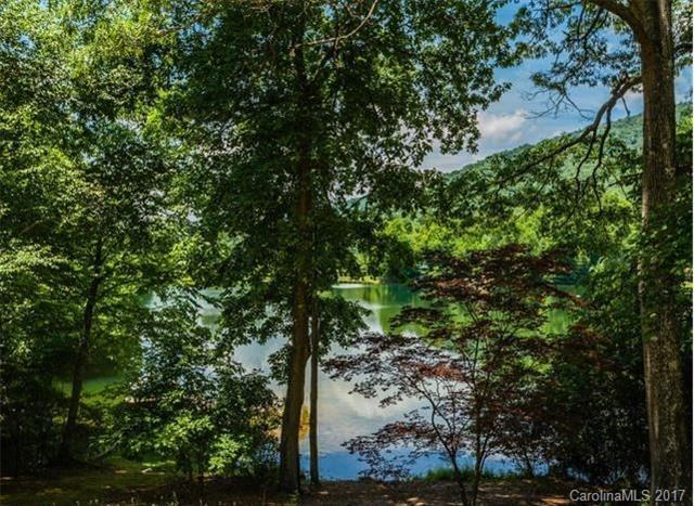 9999 Echo Lake Drive, Fairview, NC 28730 (#3142733) :: Zanthia Hastings Team