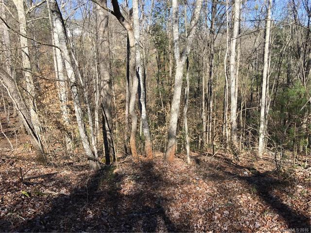 Lot 29 Tar Heel Drive #29, Mars Hill, NC 28754 (#3146589) :: LePage Johnson Realty Group, LLC