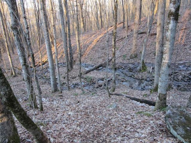 Lot 31 Sara Ridge Road, Waynesville, NC 28786 (#3147169) :: Rinehart Realty
