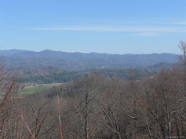 TBD Kelly Mountain Road #999, Brevard, NC 28712 (#3153888) :: Rinehart Realty