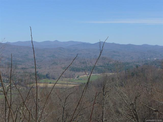 1111 Kelly Mountain Road 93 Ac,2,4,6,19,, Brevard, NC 28712 (#3153984) :: MartinGroup Properties