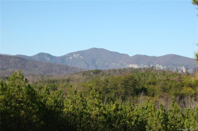 9 Ashley Court #9, Mill Spring, NC 28756 (#3158279) :: Exit Mountain Realty