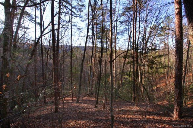 Lot 49 Round Mountain Road #49, Brevard, NC 28712 (#3158417) :: Zanthia Hastings Team