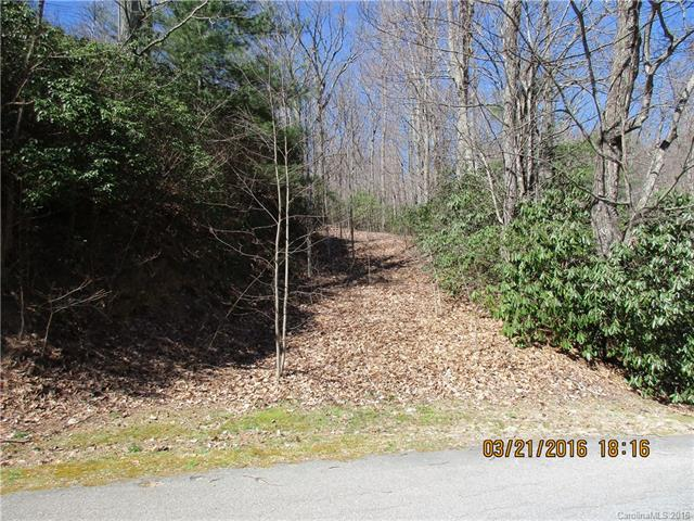 62/63 Sunny Ridge Road Lot # 62 & 63, Hendersonville, NC 28739 (#3159030) :: LePage Johnson Realty Group, LLC