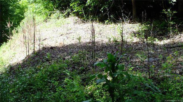 226 Forest Hill Road #226, Waynesville, NC 28785 (#3159119) :: Puffer Properties