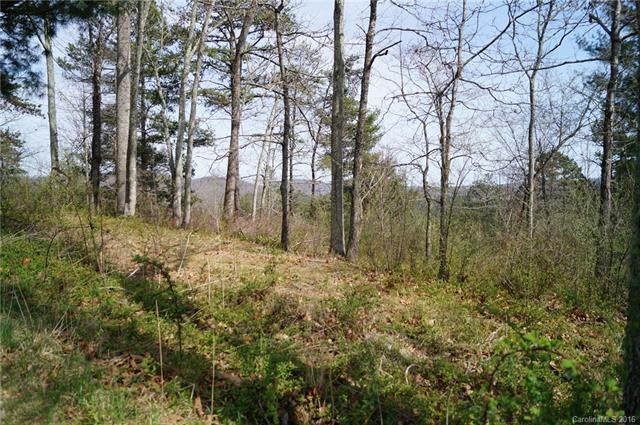 235 Hidden Meadows 19PT8, Hendersonville, NC 28792 (#3161712) :: Odell Realty Group