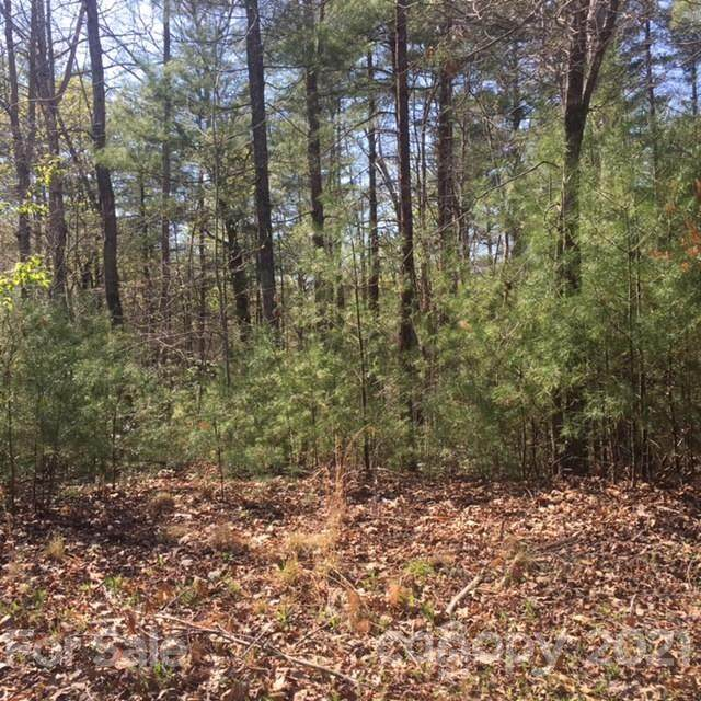5 Log Cabin Lane - Photo 1