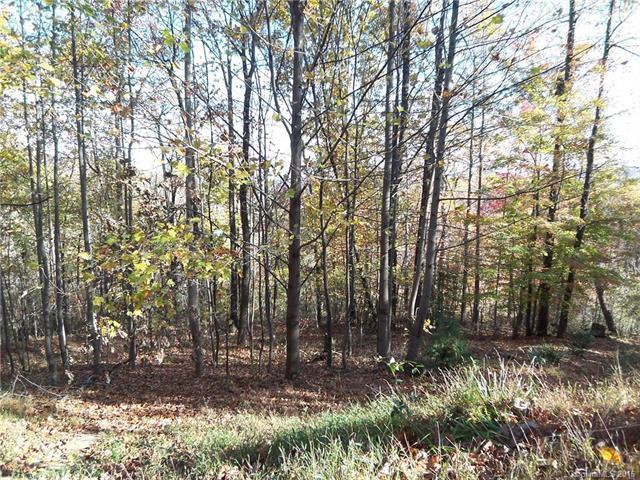467 Gene Revis Lane, Moravian Falls, NC 28654 (#3166346) :: High Performance Real Estate Advisors