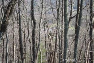 134 High Bluff Drive #134, Weaverville, NC 28787 (#3166895) :: Exit Mountain Realty