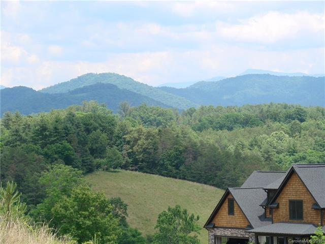 49 Gracie Lane #37, Weaverville, NC 28787 (#3168467) :: Carlyle Properties