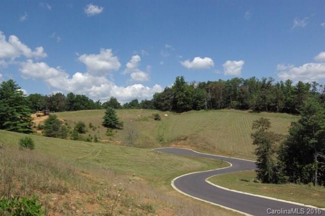 17 Ellie Jane Lane #13, Weaverville, NC 28787 (#3171128) :: Exit Realty Vistas