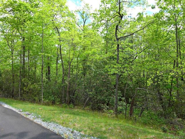 14 Ferndale #14, Pisgah Forest, NC 28768 (#3173683) :: Roby Realty