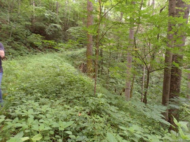 Lot 15 Minerva Drive, Waynesville, NC 28785 (#3180819) :: Robert Greene Real Estate, Inc.