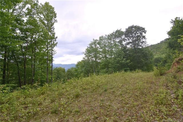 110 Big Bear Road #2, Waynesville, NC 28786 (#3181786) :: Rinehart Realty